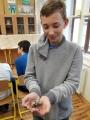 Projektový den – Pohled do světa hmyzu a bezobratlých