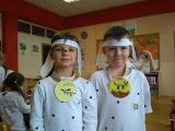 Dalmatini ve 2.A