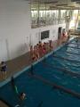 Plavecký výcvik 2019
